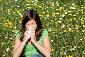 fight seasonal allergies